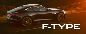 f-type model
