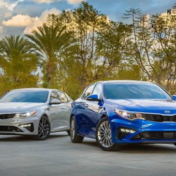 2019 Kia Optima family